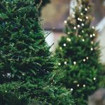Christmas Tree Lights Safety Tips