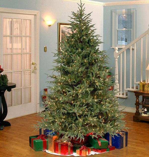 7.5 Ft Pre-lit Feel Real Frasier Grande Tree | Christmas Trees That Feel Real