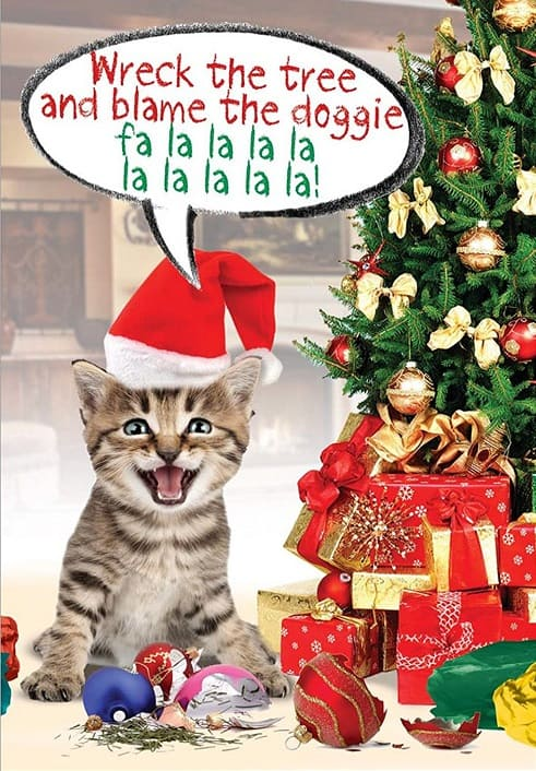 10 Cute and Funny Cat Christmas Cards - Absolute Christmas