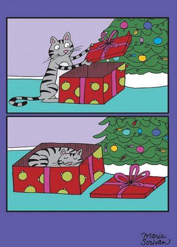 Cat Present Cat Christmas Cards