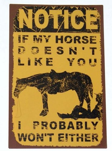 NOTICE If My Horse Doesn't Like You I Probably Won't Either Distressd Metal Sign