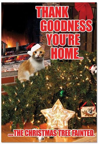 The Christmas Tree Fainted Christmas Cards with Cats