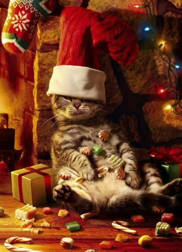 Too Many Treats Christmas Card. Love that cat with his paws on his big belly! Looks just like mine!