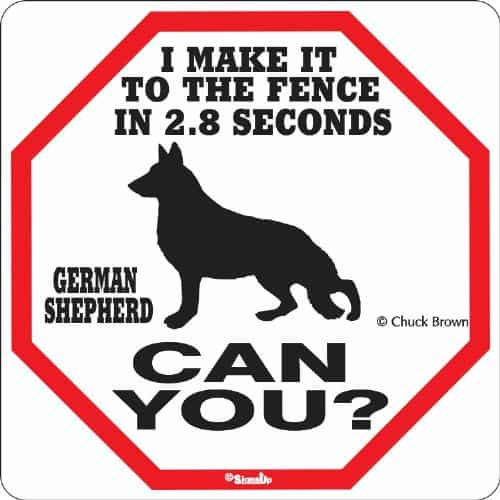 Gifts for German Shepherd Lovers - Gift for Dog Lovers