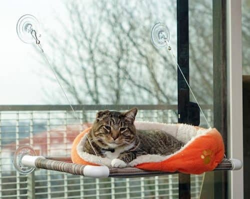 Original Kitty Cot Cat Perch - Gift idea for your kitteh