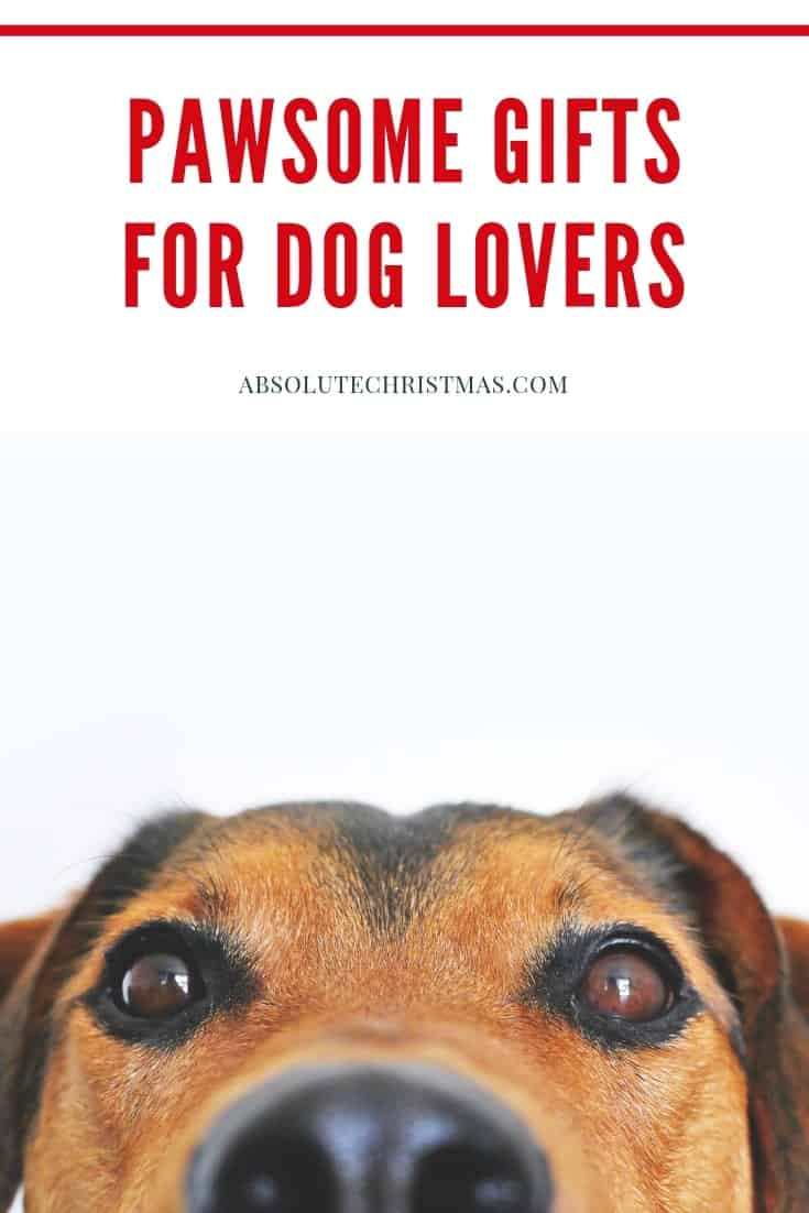 Pawsome gift ideas for dog lovers