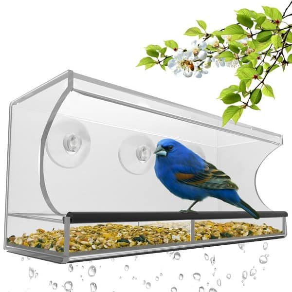Window Bird Feeder | Gifts Ideas for Grandma, Gift Ideas for Grandma