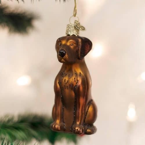 Chocolate Labrador Christmas Ornament
