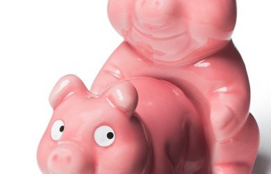 Gag Gifts for Christmas | Naughty Pigs Salt and Pepper Shaker Set