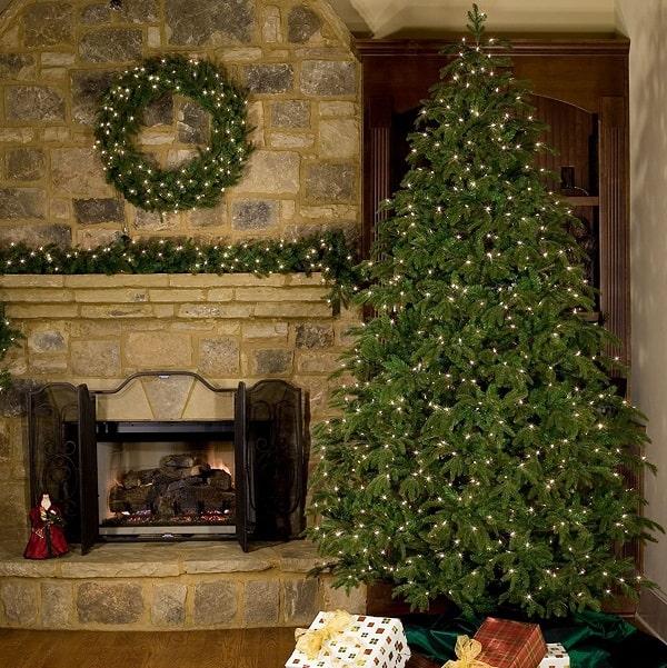 9ft Fraser Fir Christmas Tree, Unlit