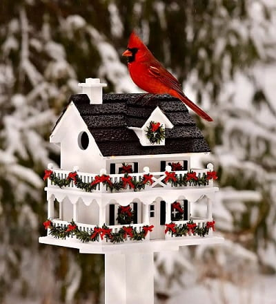 Lighted Holiday Colonial Cottage Birdhouse and Pedestal Pole Set - Christmas gifts for women over 50