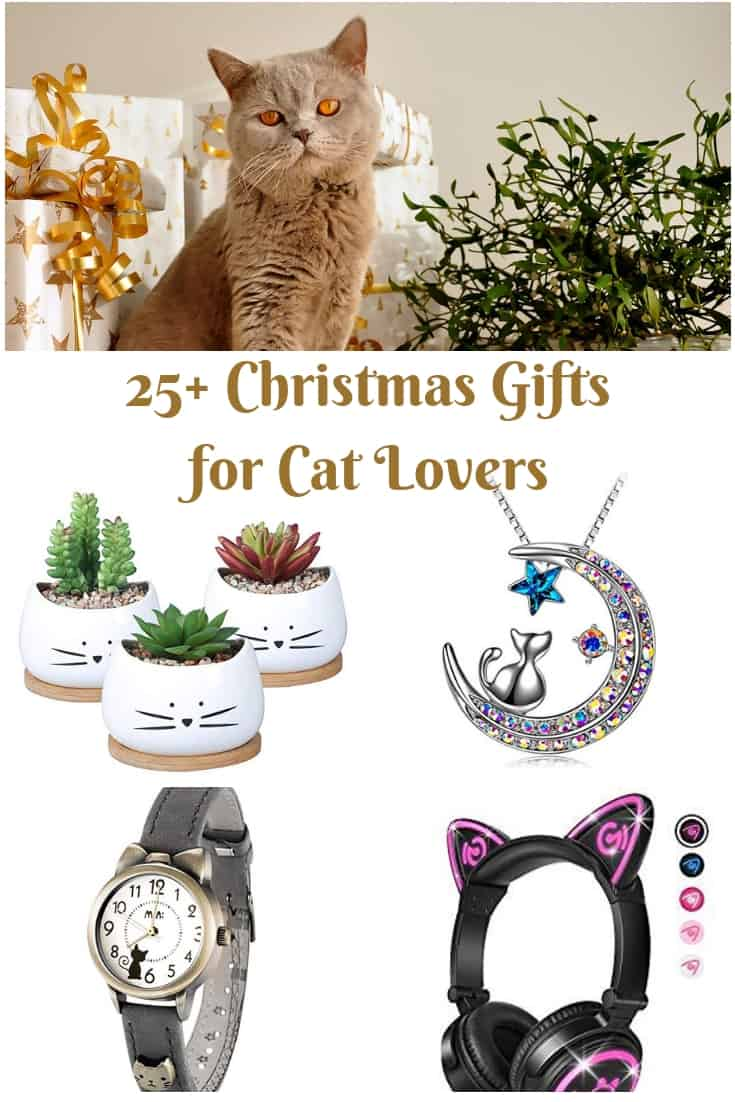 25+ Christmas Gifts for Cat Lovers