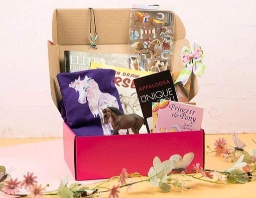 LaLa Horse Box