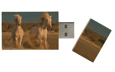 White Horses Running On a Beach Wood USB Flash Drive