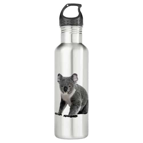 Koala Bear Stainless Steel Water Bottle
