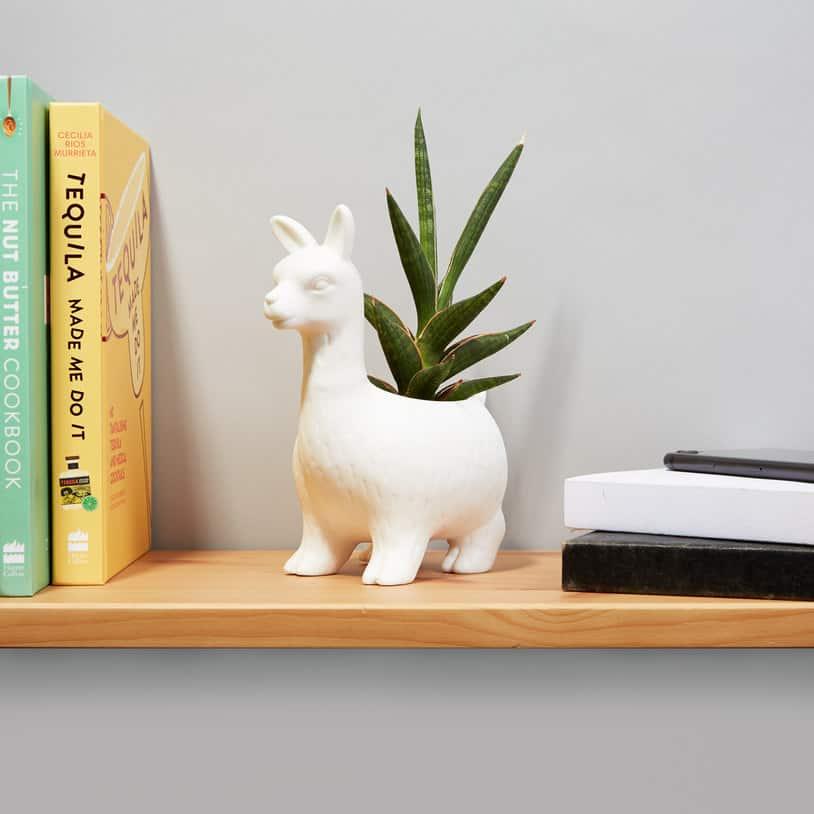 Llama Planter - Llama Themed Gifts