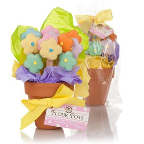 Edible Cookie Flower Pot - Gifts for Working Moms