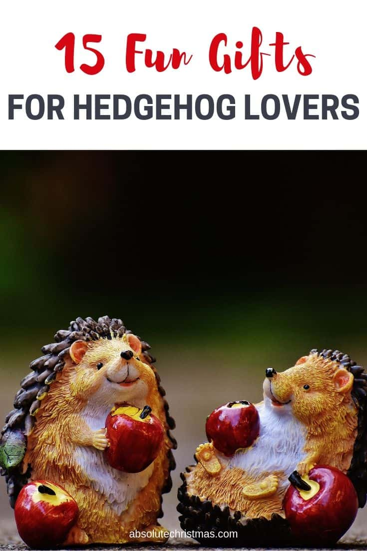 Fun Gifts for Hedgehog Lovers