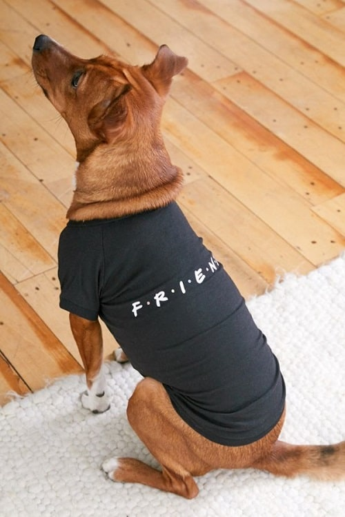 Friends Logo Pet Tee