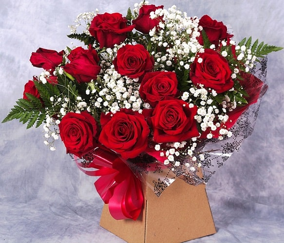 Red Roses - Romantic Gifts for Women