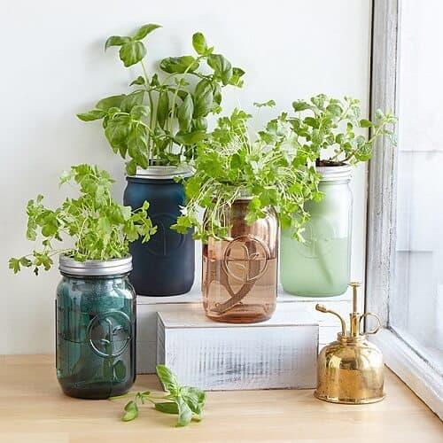 Mason Jar Indoor Herb Garden - Gardening Gifts for Moms