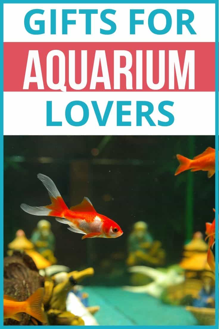 Gifts for Aquarium Lovers - Aquarists Gift Ideas