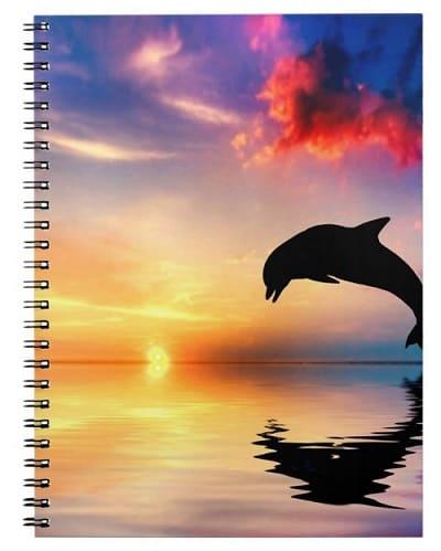 Dolphin Journal - Notebook