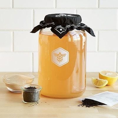 Kombucha Brew Kit