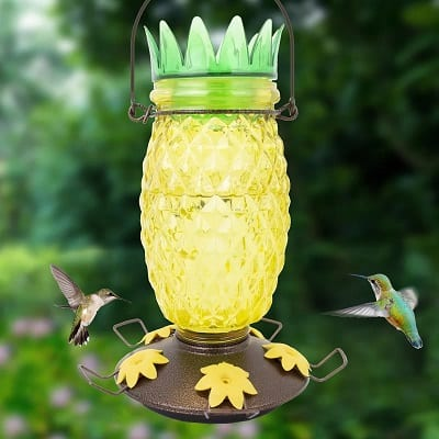 Pineapple Hummingbird Feeder