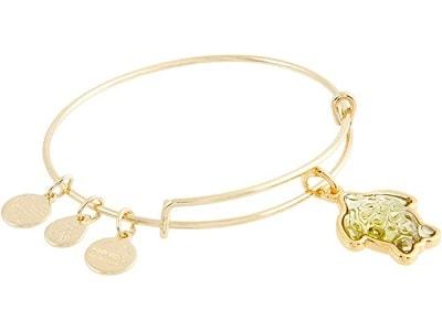 Alex and Ani Turtle Charm Expandable Wire Bangle Bracelet