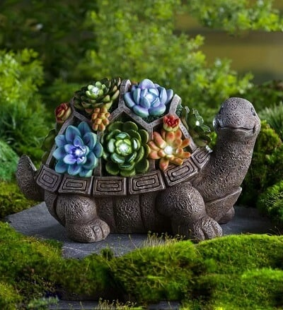 Succulent Turtle Statue with LED Lights