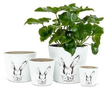 Cement Bunny Planter