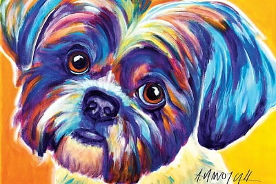 Lacey the Shih Tzu Painting Print on Canvas
