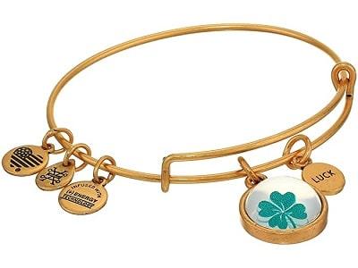 Alex and Ani Charm Mantra Bangle Bracelet