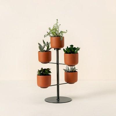 Modern Desktop Terracotta Planters