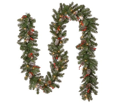 National Tree Company 9' Spruce Garland with Clear Lights