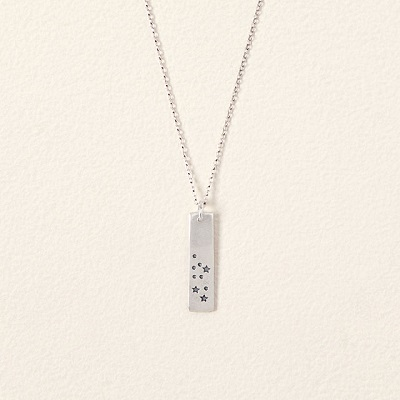 Sign of The Zodiac Necklace